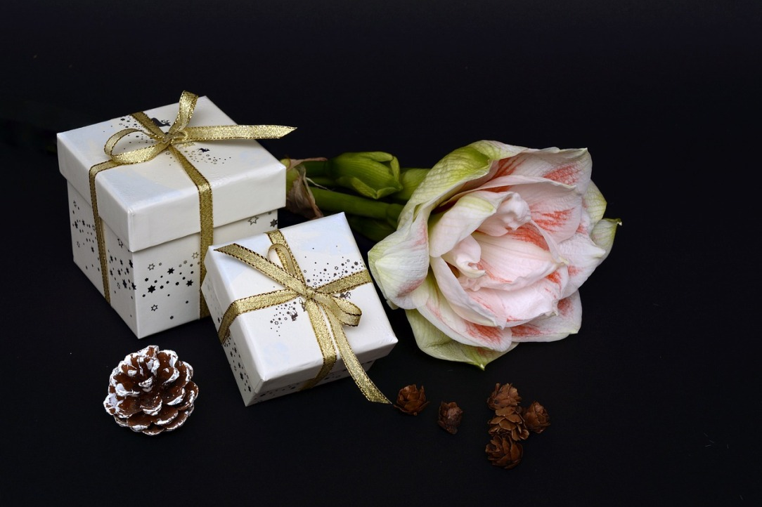 christmas-gift-3012821_1280.jpg