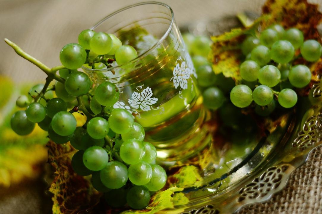 grapes-2808836_1280